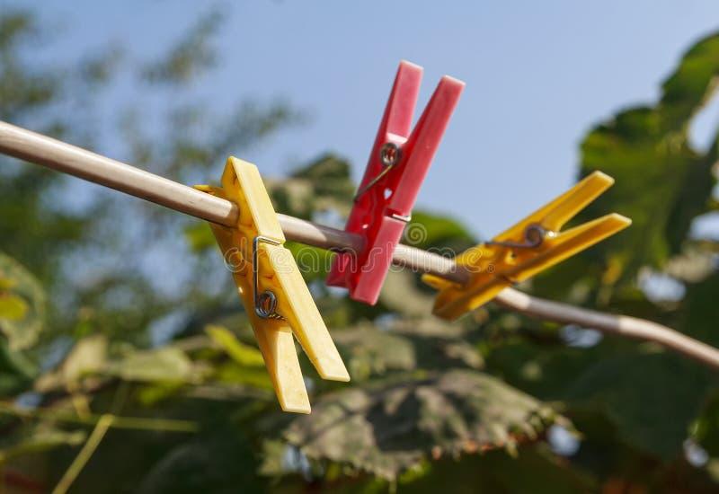 Pinzas coloridas en una cuerda para tender la ropa en el jardín fotografía de archivo