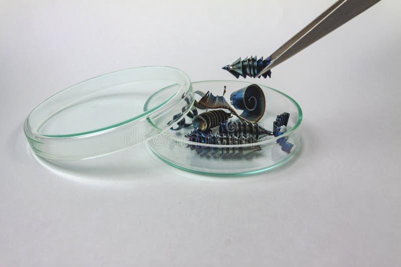 Pinzas que sostienen virutas del metal sobre una pequeña cantidad de virutas del metal foto de archivo libre de regalías