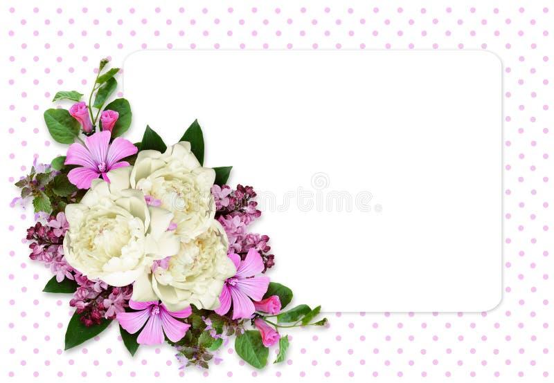 Pioen en wilde bloemensamenstelling op witte kaart stock afbeelding