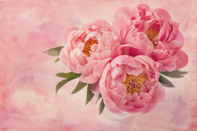 Pioenbloemen stock afbeelding