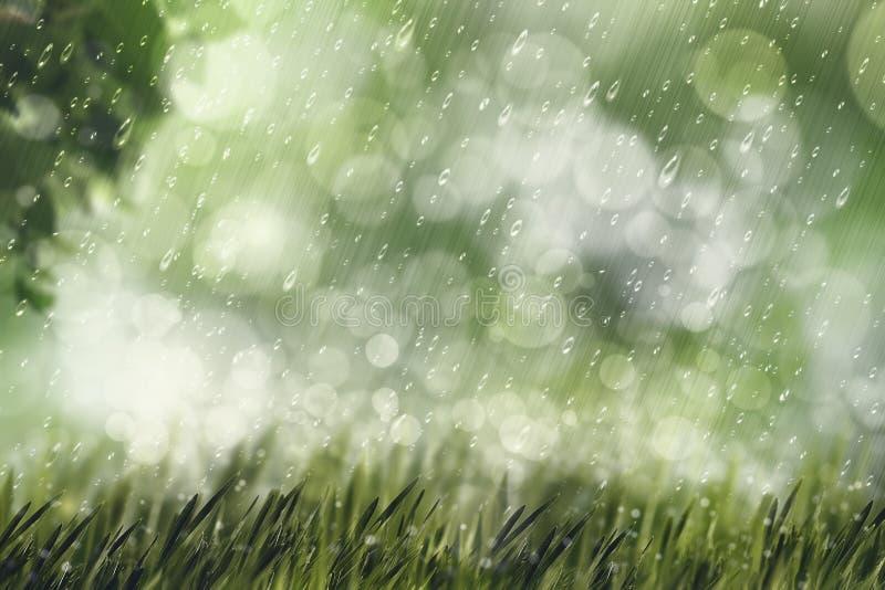 Pioggia autunnale, sfondi naturali di bellezza fotografie stock