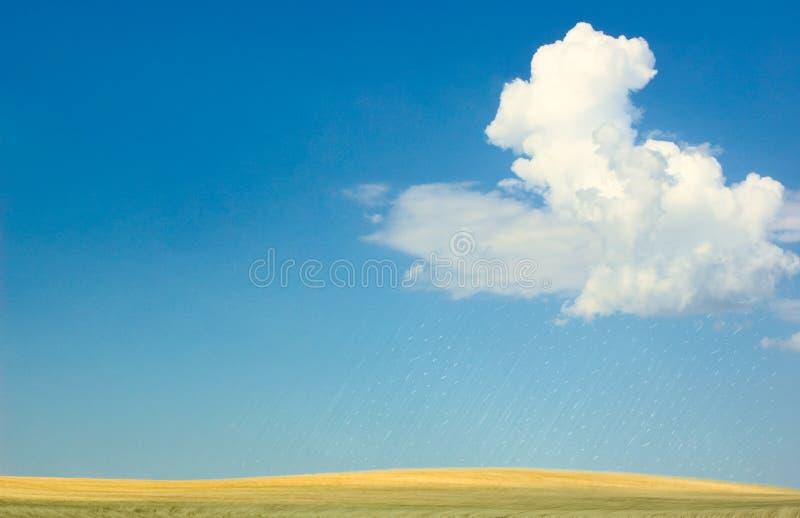 Pioggia in deserto fotografia stock