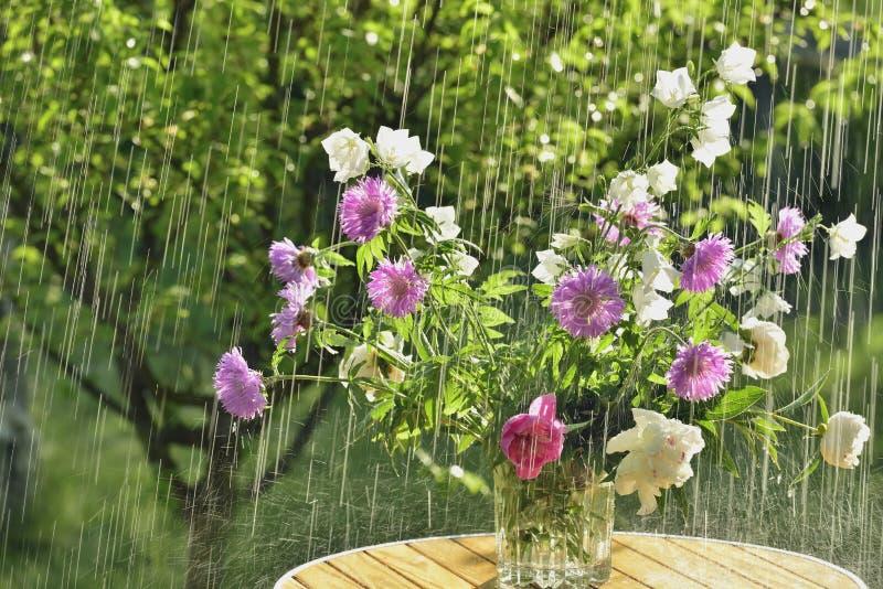 Pioggia e fiori di estate fotografie stock libere da diritti