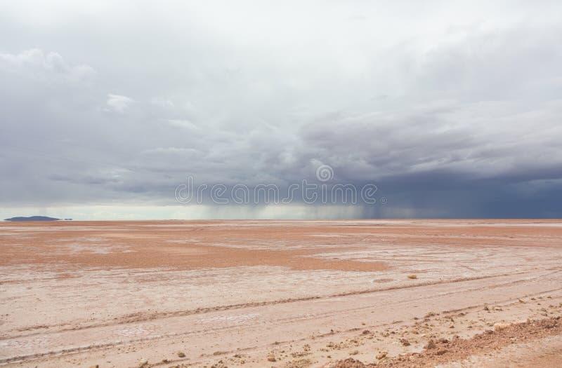 Pioggia nel deserto fotografia stock libera da diritti