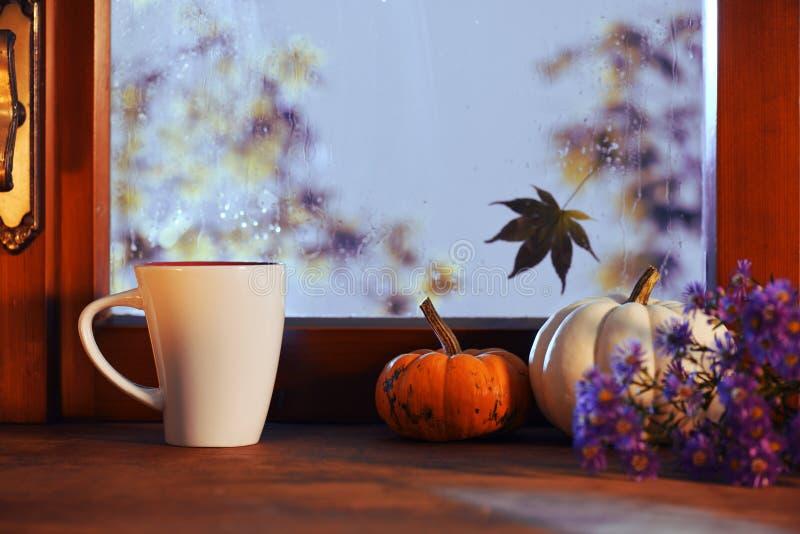 Pioggia nella serata dell'autunno fotografia stock libera da diritti