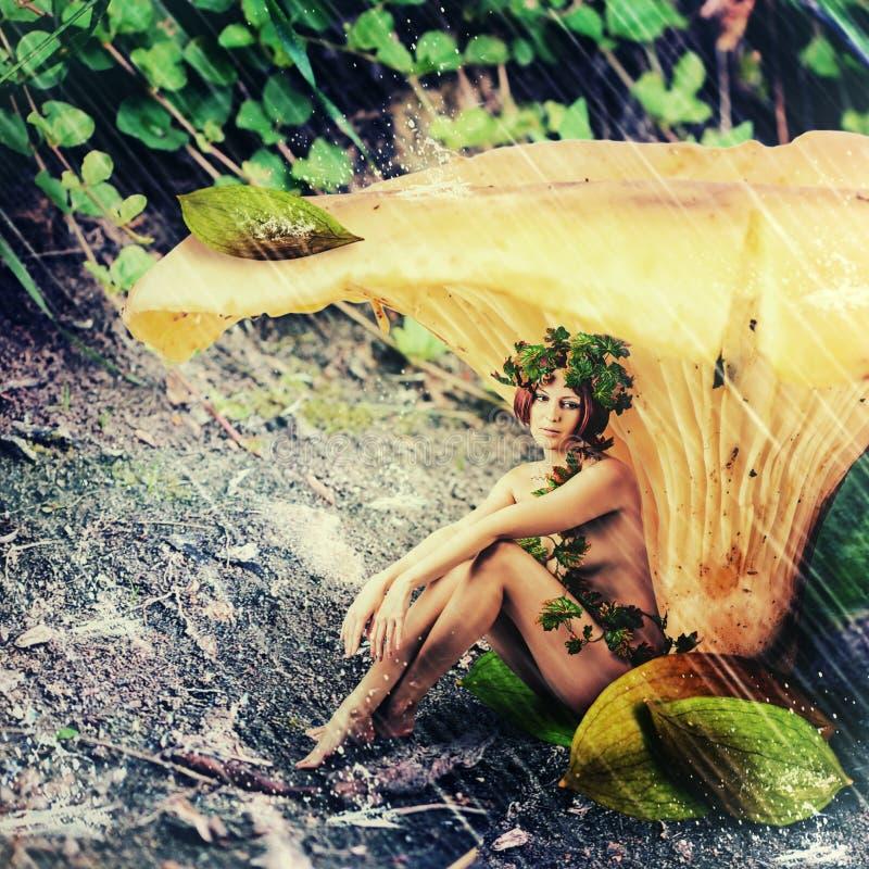Pioggia nella terra di fantasia. crisalide della foresta della donna fotografia stock