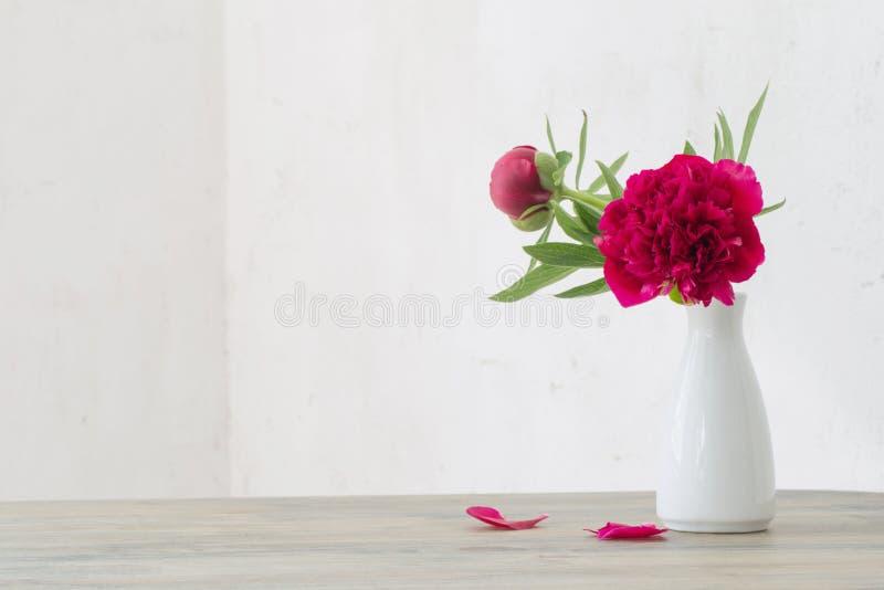 Pionblommor i den vita vasen på vit bakgrund royaltyfri bild
