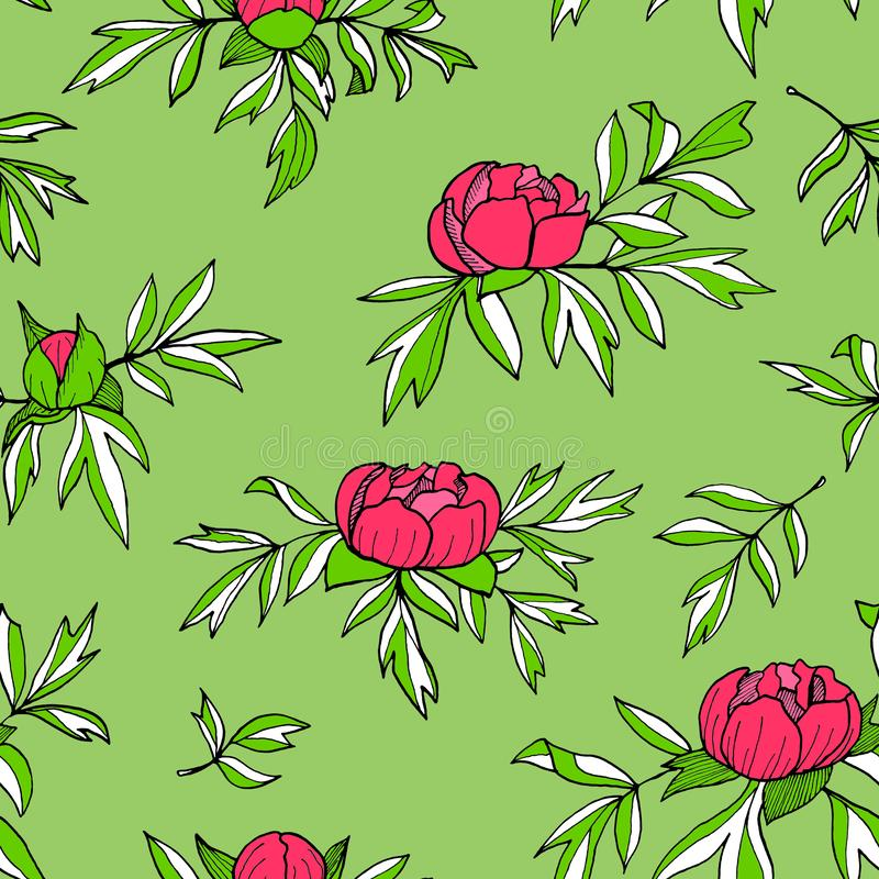 Pionblommor, knoppar, sömlös modell för sidor Utdragen blom- illustration för hand som isoleras på grön bakgrund _ royaltyfri illustrationer