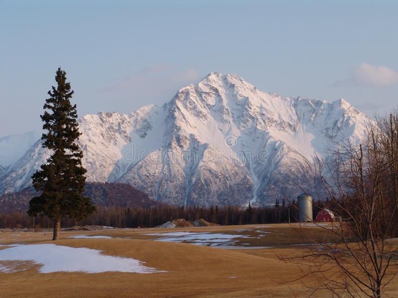 Pioneer Peak in Alaska. The snow covered landmark of Pioneer Peak is part of the Chugach Mountains near Palmer, Alaska. Photo taken from Palmer golf course with stock image