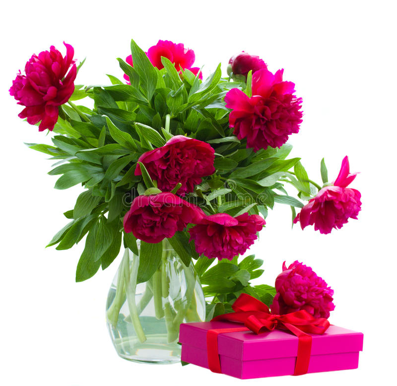 Pionen blommar i vas med gåvaasken royaltyfria foton