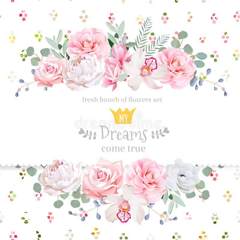 Pionen steg, orkidén, kamelian, rosa färgblommor och det dekorativa kortet för design för eucaliptussidavektor vektor illustrationer