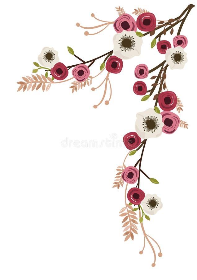 Pioner och anemon royaltyfri illustrationer