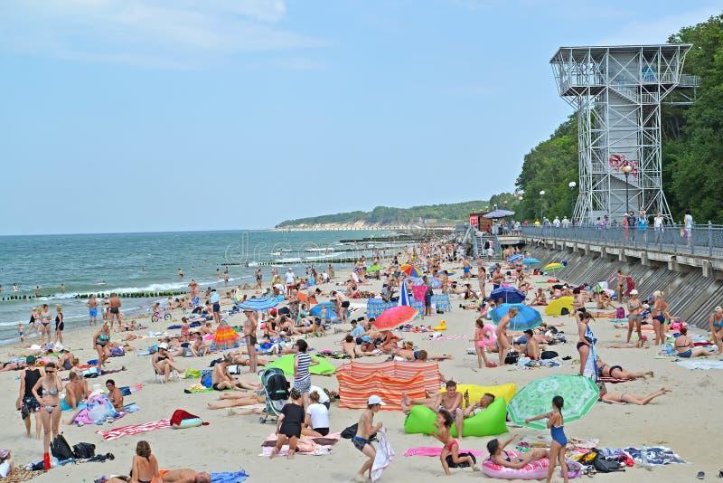 PIONERSK, РОССИЯ Пляж многолюдного города в летнем дне Область Калининграда стоковые фото