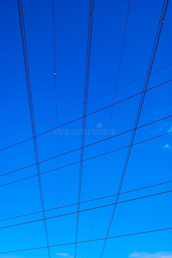 Pionowi elektryczni kable fotografia royalty free