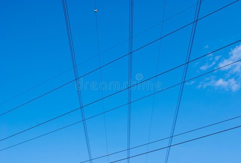 Pionowo i horyzontalni elektryczni kable fotografia royalty free