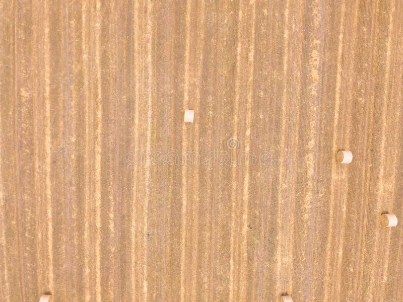 Pionowo odgórnego widoku beli siano na kukurudzy uprawiają ziemię po żniwa w Teksas, obraz royalty free