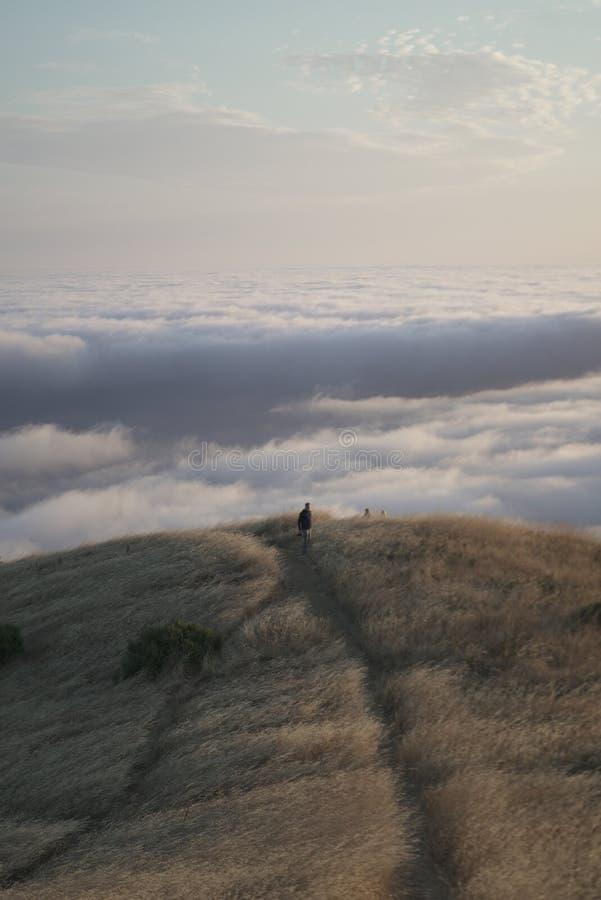 Pionowo strzał męska chodząca odległość z widocznym linia horyzontu na Mt Tama w Marin, CA obraz royalty free