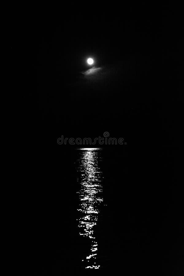 Pionowo strzał piękny pełny blask księżyca i odbicie w rzece zdjęcia royalty free