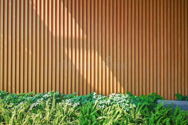 Pionowo wzór brązu drewniany ścienny tło dekoruje z zielonym liścia krzakiem pod światłem słonecznym fotografia royalty free