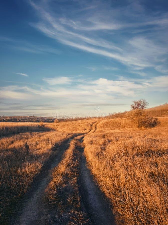 Pionowy strzał, scena późnej jesieni z brudną drogą przechodzącą przez suche pole trawy Idylliczny krajobraz wiejski, nastrój sez zdjęcie stock