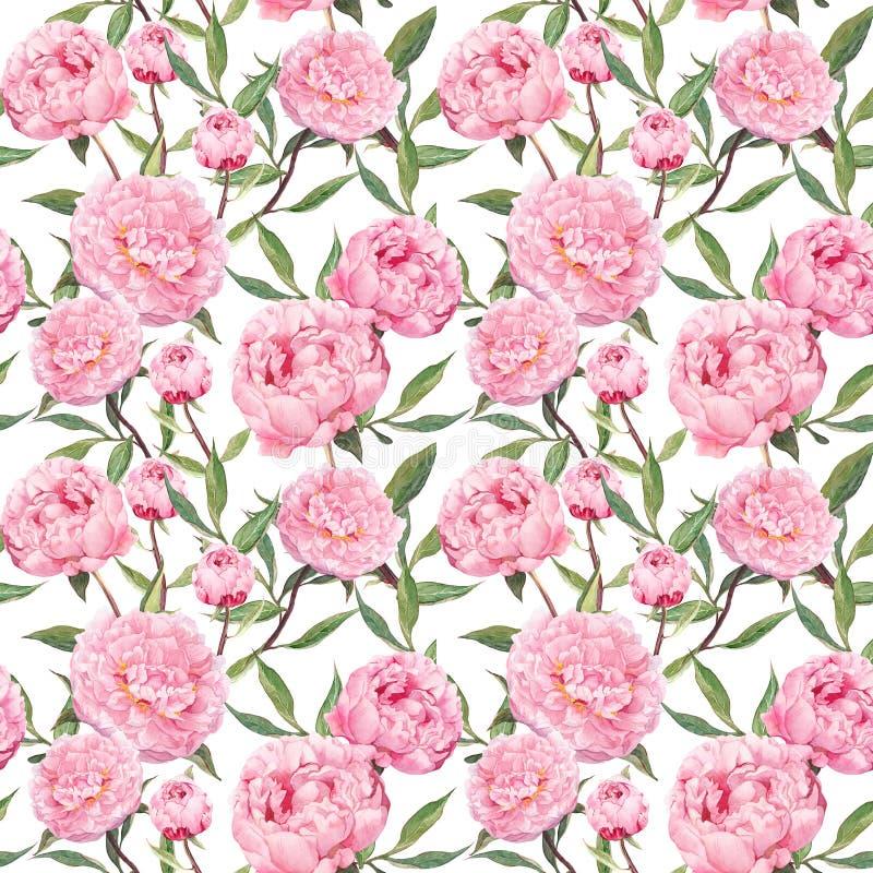 Pionrosa färgblommor Blom- upprepande modell vattenfärg arkivfoto