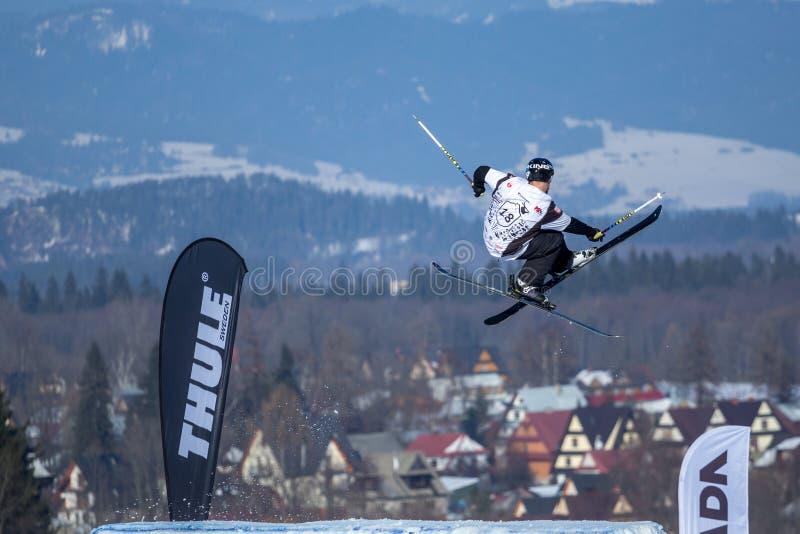 Piotr Wojarski, Polska narciarka obraz stock