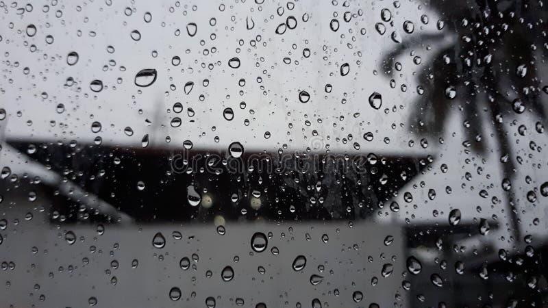 Piova le gocce immagine stock