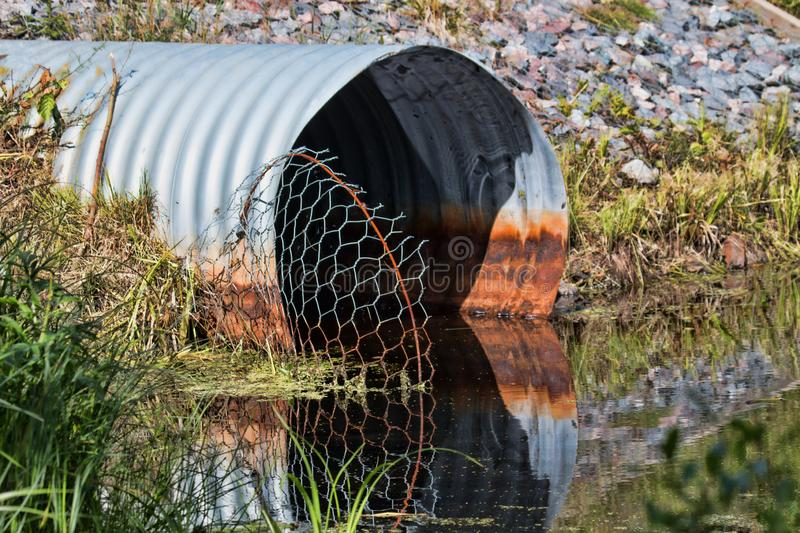 Pipe and mesh that recovers the penetration of beavers stock photo