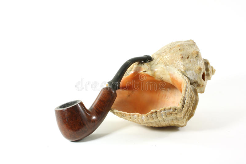 Pipe and shell