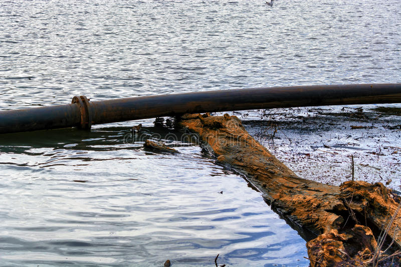 Pipeline, plastic pipes float on the water surface. stock photography
