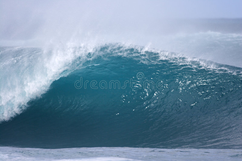 Pipeline wave. An empty wave breaks at Pipeline royalty free stock photos