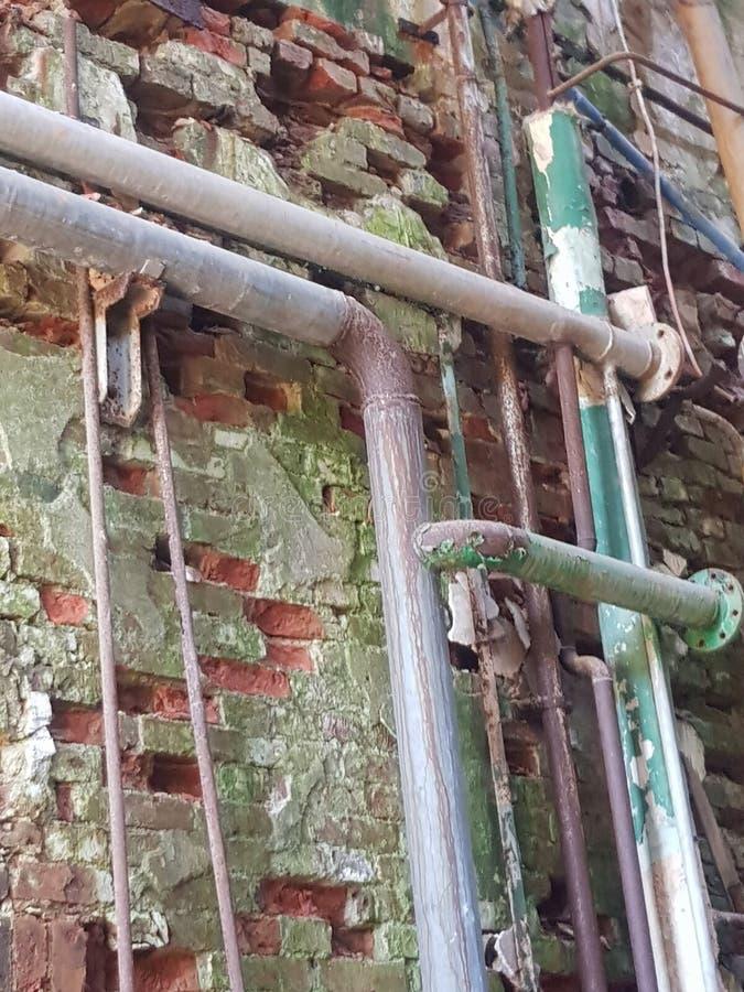 Moss at the old brick wall stock image