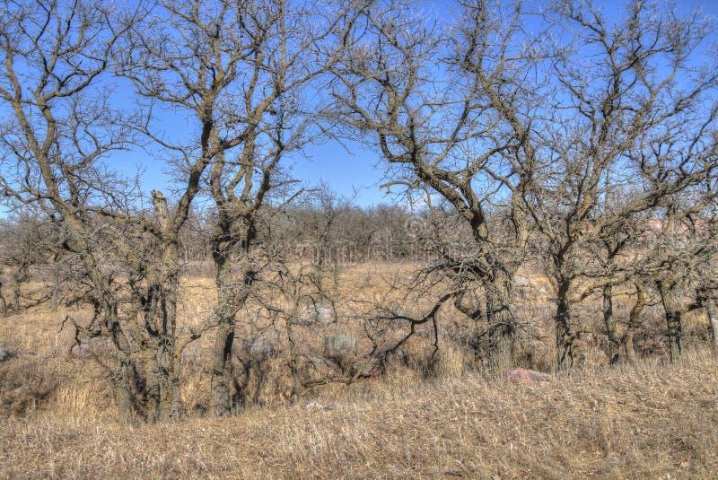 Pipestone Krajowy zabytek w Południowo-zachodni Minnestoa obraz stock