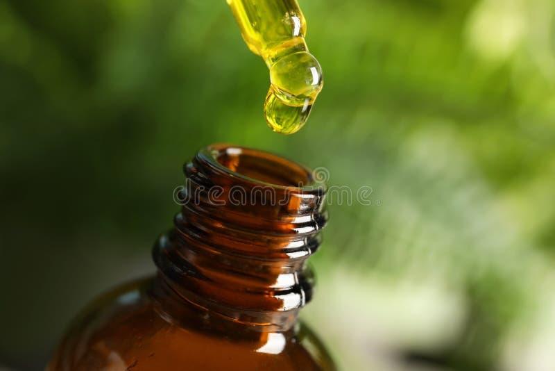 Pipeta con aceite sobre la botella fotos de archivo