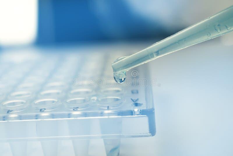 Pipeta de la investigación de la célula madre fotografía de archivo