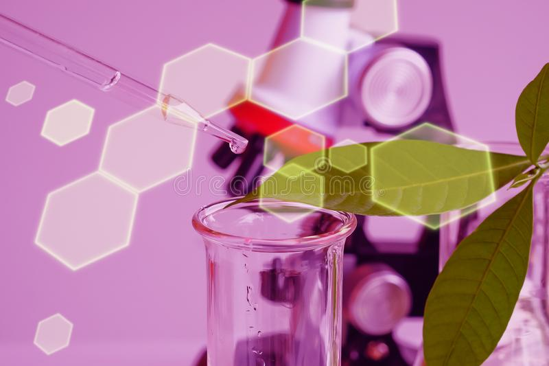 Pipette dropping above test tube on sample chemical into herbal plants , bio technology medicine research. Concept stock images