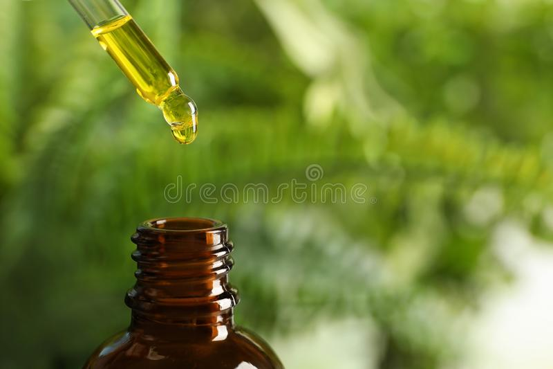 Pipette with oil over bottle on blurred background. Space for text royalty free stock photos