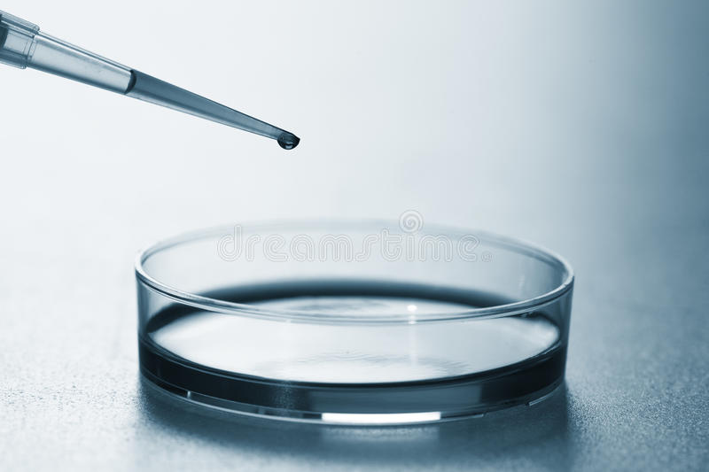 Pipette royalty free stock photography