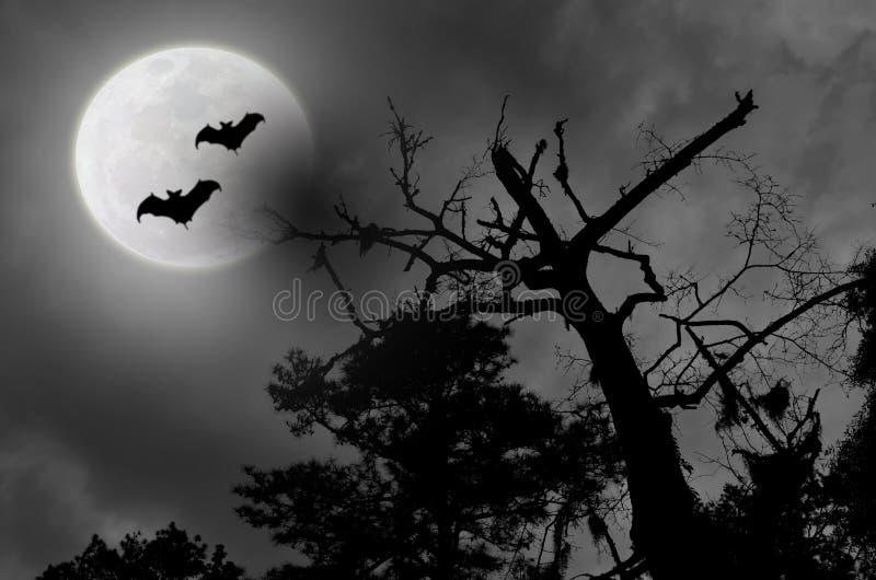 Pipistrelli nuvolosi della luna piena del cielo notturno spettrale royalty illustrazione gratis