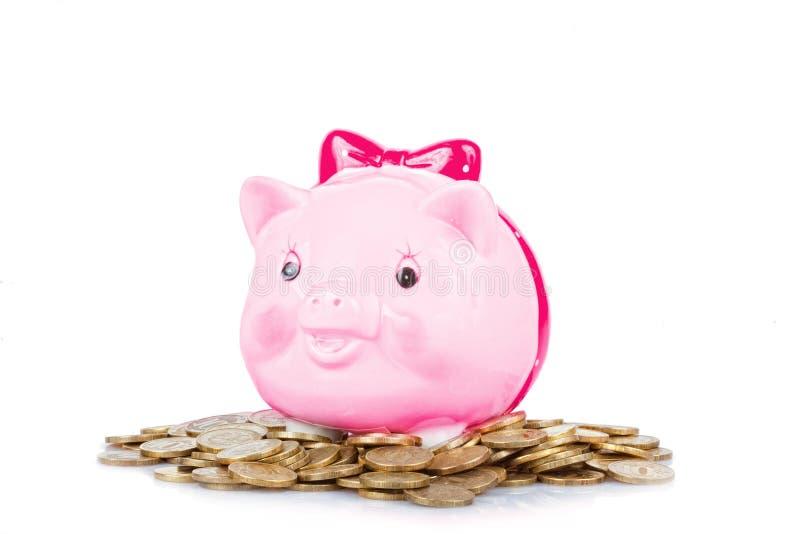 Pique a caixa da porco-moeda imagem de stock royalty free