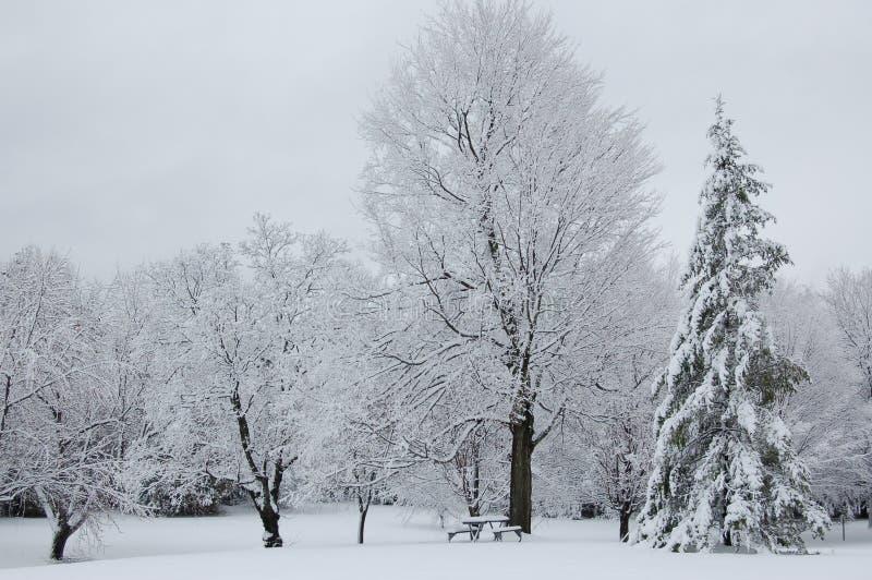 Pique-nique de l'hiver images stock