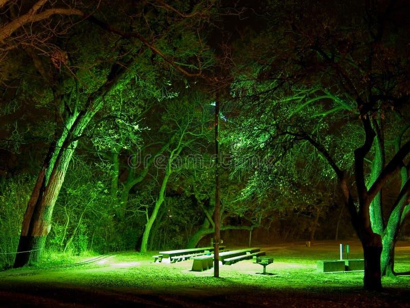 Pique-nique de nuit photo libre de droits