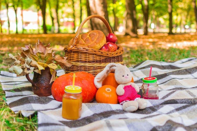 Pique-nique en nature panier en osier sur un plaid de plaid autour du feuillage, des boissons, des potirons et des pommes jaunes, image stock