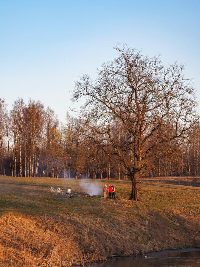 Pique-nique sous un grand arbre au coucher du soleil au printemps photos stock