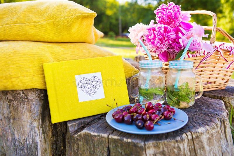 Piquenique brilhante do verão foto de stock