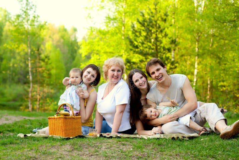 Piquenique da família fotografia de stock