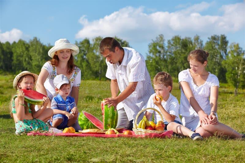 Piquenique da família no parque imagens de stock