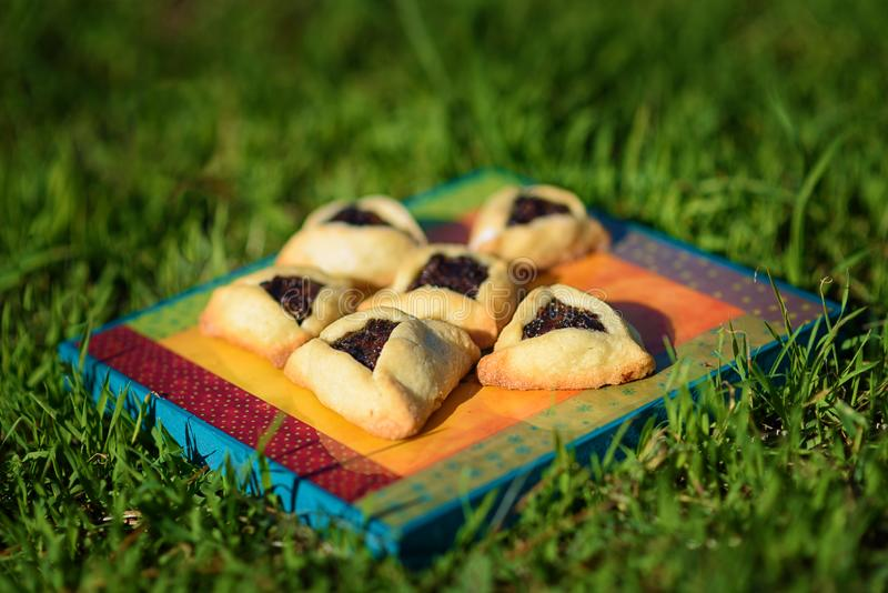 Piquenique da mola na grama com as cookies caseiros na placa de madeira Cookies de Hamantaschen ou orelhas dos hamans para Purim imagens de stock