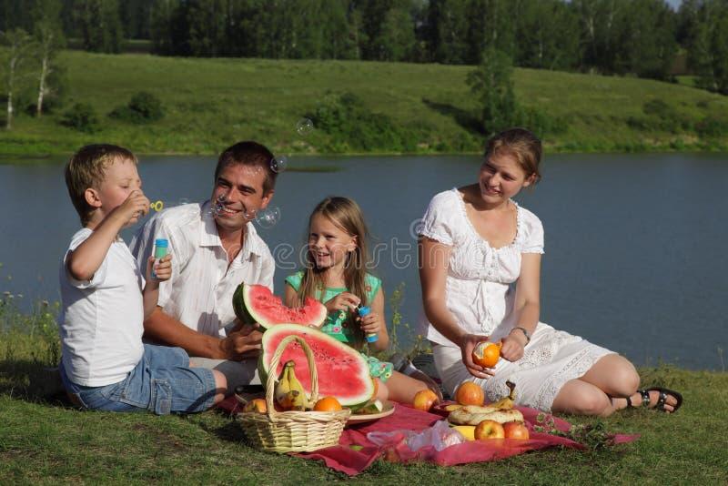 Piquenique das famílias fotografia de stock royalty free