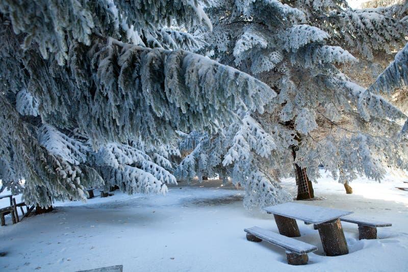 Piquenique durante a estação do inverno, Bulgária imagens de stock royalty free